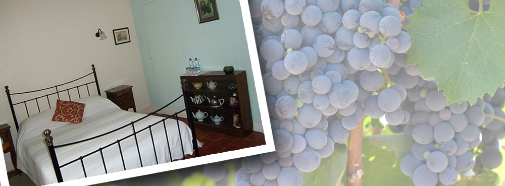 Bed & Breakfast Accommodation, Les Mimosas Gite, Languedoc-Roussillon